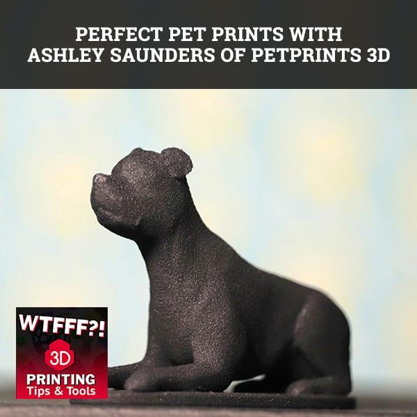 WTF 105 | 3D Printed Pets
