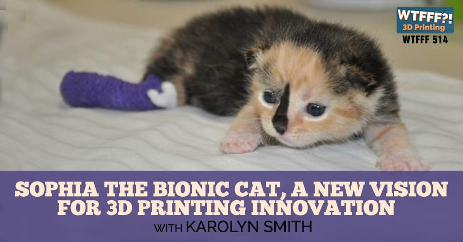 WTFFF 514 | 3D Printing Innovation
