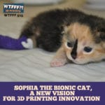 Sophia the Bionic Cat, A Story of Perseverance and 3D Printing Innovation with Karolyn Smith